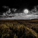 タロット占い月正位置・逆位置で恋愛、復縁、片思い・浮気・出会いはどうなる?