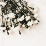 【夢占い】葬式の夢は何のサイン?自分の葬式、友人の葬式など毎に夢の意味を調査