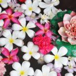 【夢占い】夢の中で花が出てきたのは何のサイン?花の夢の意味を調査