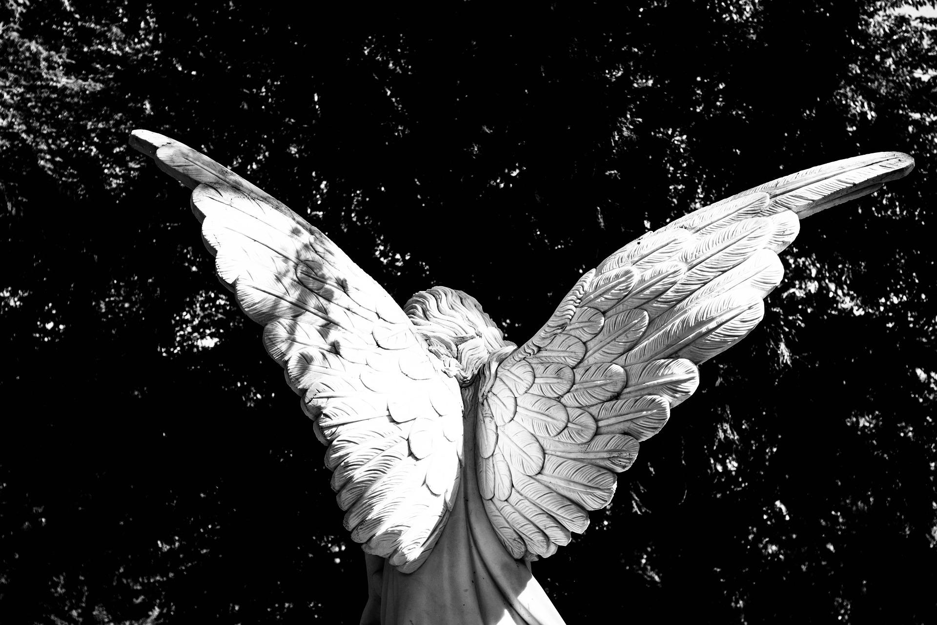 夢占いで天使が意味するサインは?天使が夢に出てきた夢の意味を解説