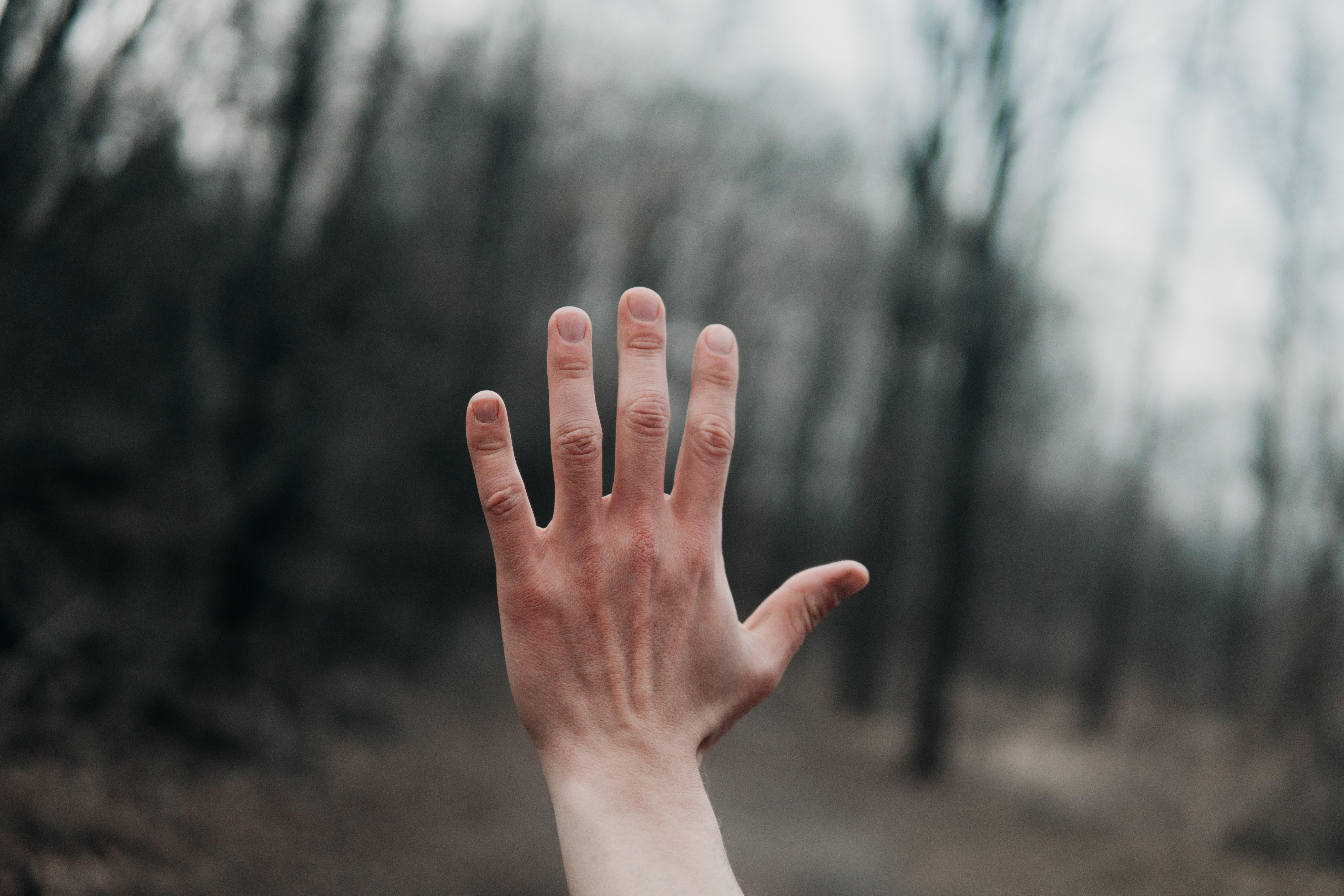 手相占いの手相知能線について徹底解説 手相の手相知能線の見方のポイントをまとめました